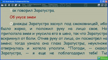 скриншот ICE Book Reader Professional