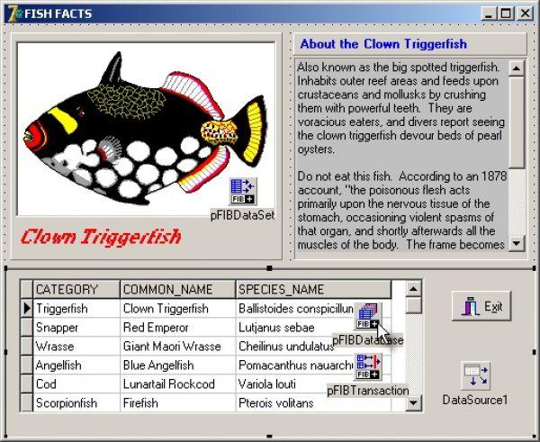 Фото Devrace FIBPlus for Borland InterBase and Firebird. скриншот Devrace F