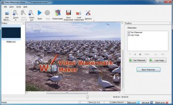 скриншот Video Watermark Software