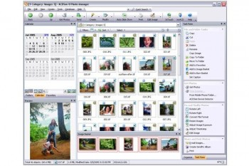 скриншот ACDSee Photo Manager