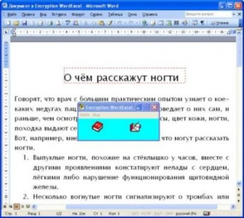 скриншот Encryption WordExcel