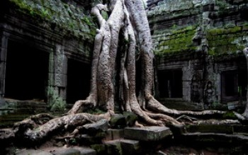 скриншот Amazing Ta Prohm