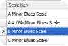фото Guitar Scales  1.0.4036.6928
