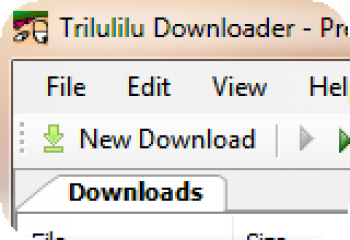 скриншот Trilulilu Downloader