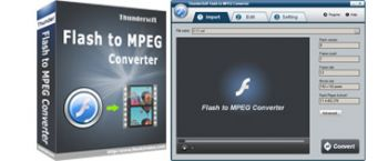 скриншот ThunderSoft Flash to MPEG Converter