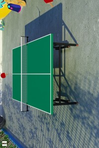 скриншот Virtual Table Tennis 3